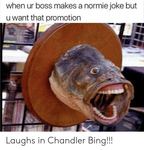 Chandler Bing, Bing, and Normie: when ur boss makes a normie joke but  u want that promotion Laughs in Chandler Bing!!!