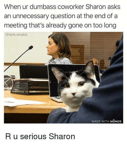 Funny, Asks, and Tank: When ur dumbass coworker Sharon asks  an unnecessary question at the end of a  meeting that's already gone on too long  @tank.sinatra  MADE WITH MOMUS R u serious Sharon