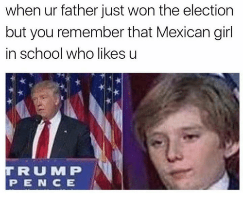 mmp: when ur father just won the election  but you remember that Mexican girl  in school who likes u  TIR U MMP  P IE IN CE