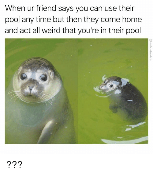comely: When ur friend says you can use their  pool any time but then they come home  and act all weird that you're in their pool ???