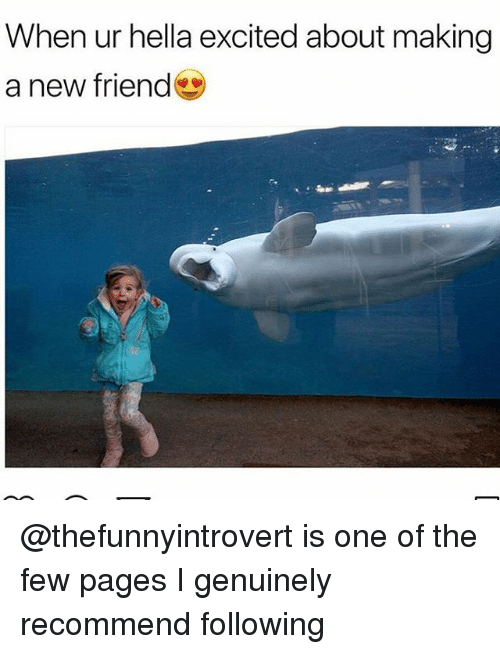 Funny, Pages, and One: When ur hella excited about making  a new friend @thefunnyintrovert is one of the few pages I genuinely recommend following