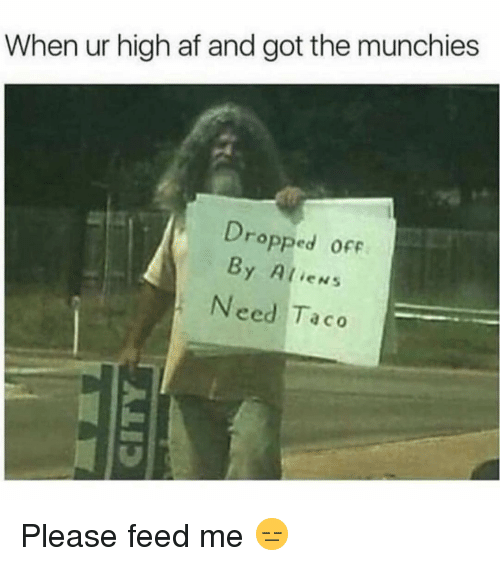 feed me: When ur high af and got the munchies  Dro  pped ofF  By Alien:s  Need Taco Please feed me 😑