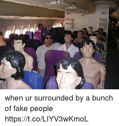 Fake, Girl Memes, and Fake People: when ur surrounded by a bunch of fake people https://t.co/LIYV3wKmoL
