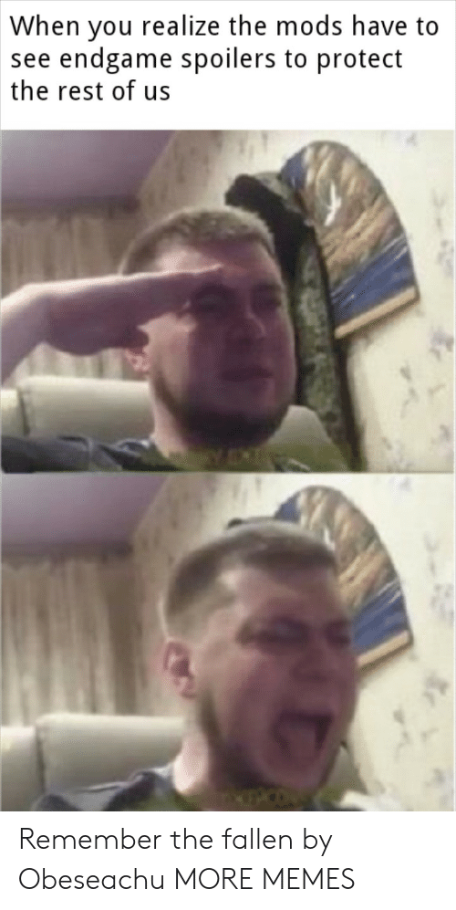 Dank, Memes, and Target: When vou realize the mods have to  see endgame spoilers to protect  the rest of us Remember the fallen by Obeseachu MORE MEMES