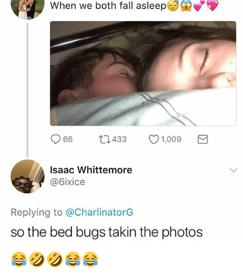 Fall, Bed Bugs, and Girl Memes: When  we  both  fall  asleep  66 t1433  1,009  Isaac Whittemore  @6ixice  Replying to @CharlinatorG  so the bed bugs takin the photos 😂🤣🤣😂😂
