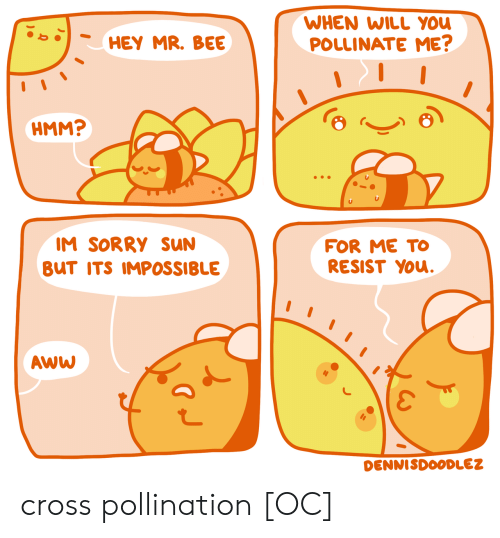 Aww, Sorry, and Cross: WHEN WILL YOU  POLLINATE ME?  HEY MR. BEE  HMM?  IM SORRY sUN  FOR ME TO  RESIST YOu.  BUT ITS IMPOSSIBLE  AWW  DENNISDOODLEZ cross pollination [OC]