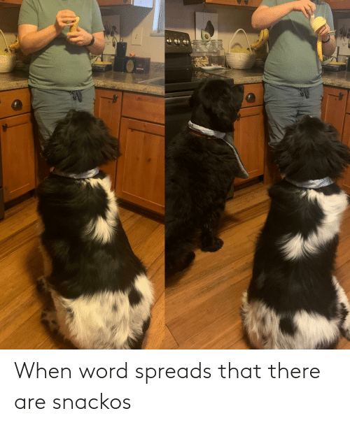 spreads: When word spreads that there are snackos