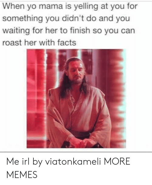 When Yo: When yo mama is yelling at you for  something you didn't do and you  waiting for her to finish so you can  roast her with facts Me irl by viatonkameli MORE MEMES