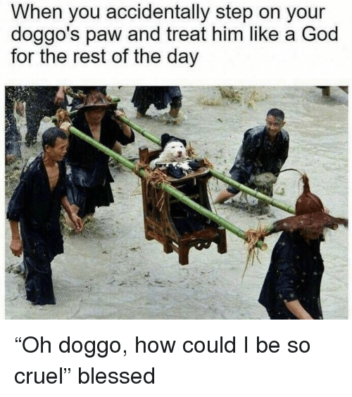 "Blessed, God, and Memes: When you accidentally step on your  doggo's paw and treat him like a God  for the rest of the day ""Oh doggo, how could I be so cruel"" blessed"