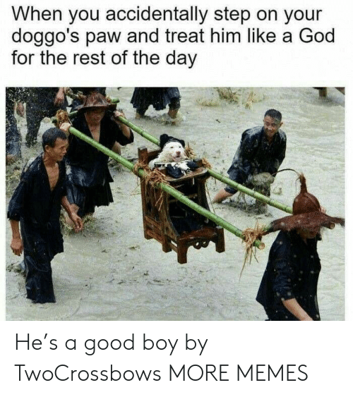 Dank, God, and Memes: When you accidentally step on your  doggo's paw and treat him like a God  for the rest of the day He's a good boy by TwoCrossbows MORE MEMES