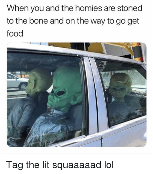 Food, Funny, and Lit: When you and the homies are stoned  to the bone and on the way to go get  food Tag the lit squaaaaad lol
