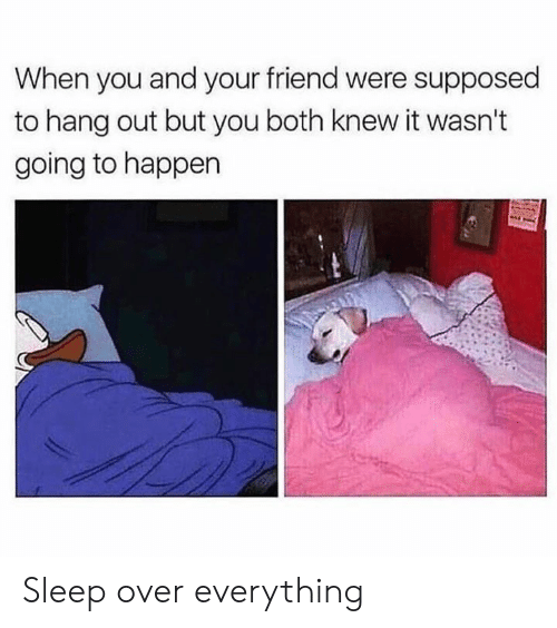 Dank, Sleep, and 🤖: When you and your friend were supposed  to hang out but you both knew it wasn't  going to happen Sleep over everything