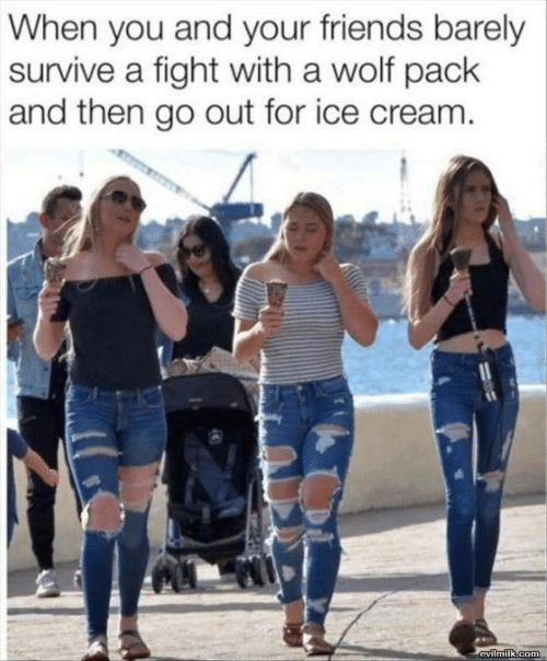Friends, Ice Cream, and Wolf: When you and your friends barely  survive a fight with a wolf pack  and then go out for ice cream.  evilmilk.com