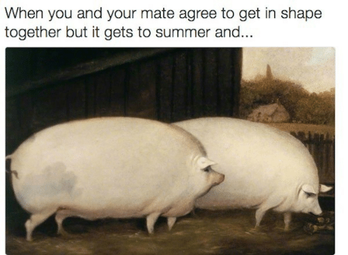Summer, You, and Shape: When you and your mate agree to get in shape  together but it gets to summer and...