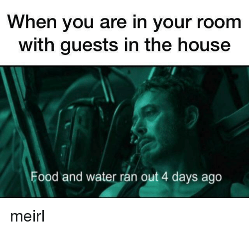 Food, House, and Water: When you are in your room  with guests in the house  Food and water ran out 4 days ago meirl