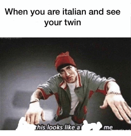 Memes, 🤖, and Italian: When you are italian and see  your twirn  his looks like a  me