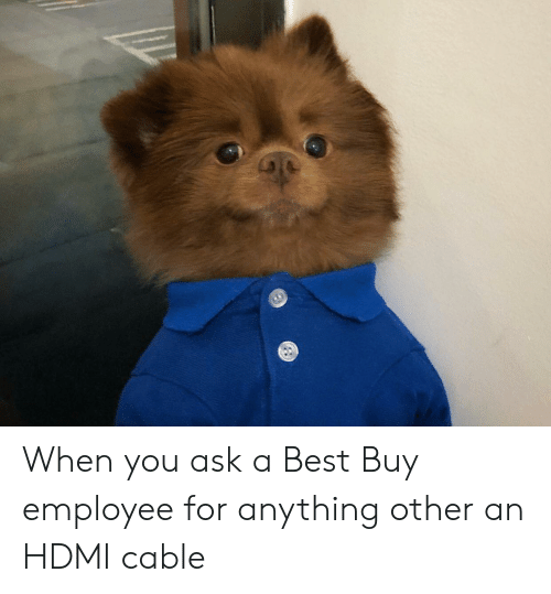 Best Buy: When you ask a Best Buy employee for anything other an HDMI cable