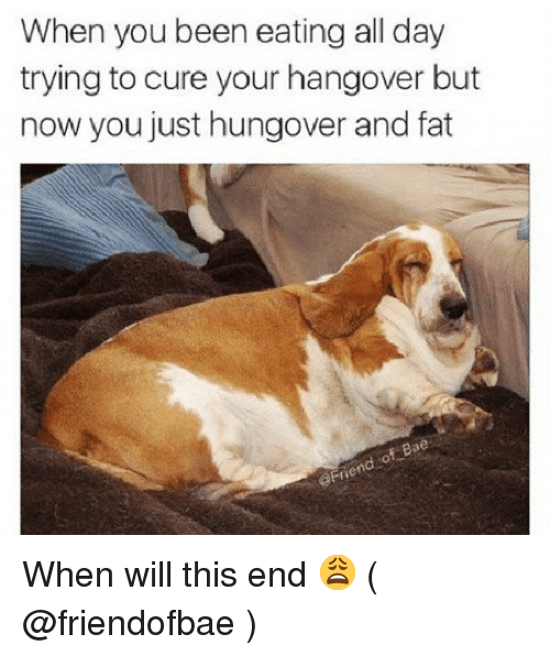 Hangover, Girl Memes, and Fat: When you been eating all day  trying to cure your hangover but  now you just hungover and fat  aFne When will this end 😩 ( @friendofbae )