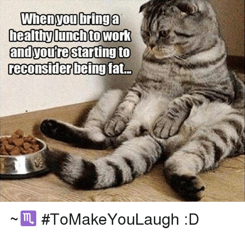 Memes, Work, and Fat: When you bring a  heathT lunch to work  and you're starting to  reconsider  being fat. ~♏ #ToMakeYouLaugh :D