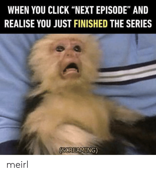 "next episode: WHEN YOU CLICK ""NEXT EPISODE"" AND  REALISE YOU JUST FINISHED THE SERIES  SCREAMING) meirl"