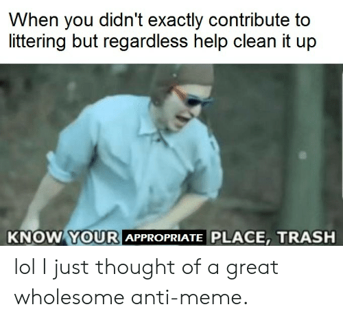 Lol, Meme, and Trash: When you didn't exactly contribute to  littering but regardless help clean it up  KNOW YOURI  APPROPRIATE PLACE, TRASH lol I just thought of a great wholesome anti-meme.