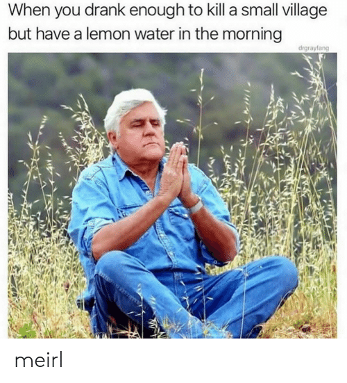 village: When you drank enough to kill a small village  but have a lemon water in the morning  drgrayfang meirl