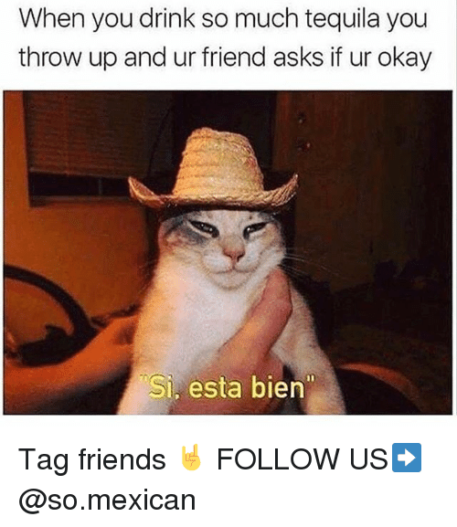 Friends, Memes, and Okay: When you drink so much tequila you  throw up and ur friend asks if ur okay  Si, esta bien Tag friends 🤘 FOLLOW US➡️ @so.mexican