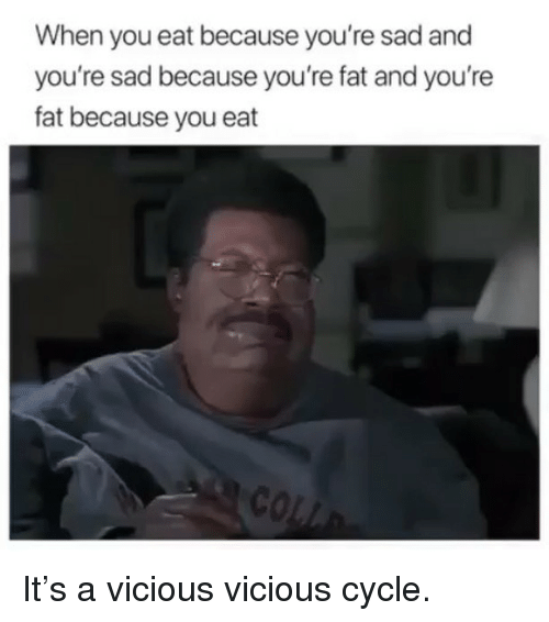 Vicious Cycle: When you eat because you're sad and  you're sad because you're fat and you're  fat because you eat It's a vicious vicious cycle.