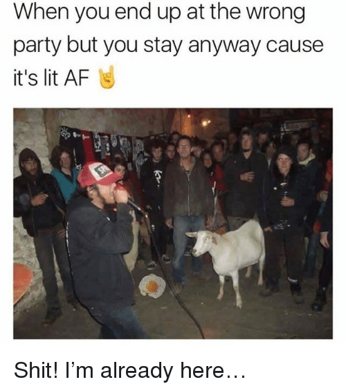 It's lit: When you end up at the wrong  party but you stay anyway cause  it's lit AF <p>Shit! I&rsquo;m already here&hellip;</p>