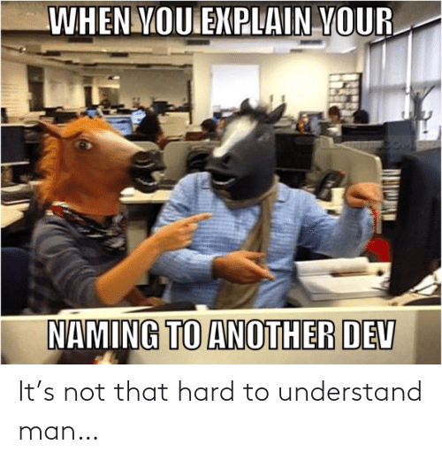Not That: WHEN YOU EXPLAIN YOUR  NAMING TO ANOTHER DEV It's not that hard to understand man…