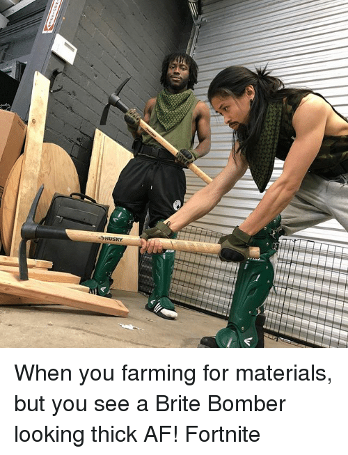 Farming: When you farming for materials, but you see a Brite Bomber looking thick AF! Fortnite