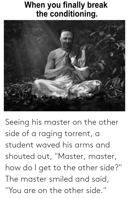"Torrent: When you finally break  the conditioning. Seeing his master on the other side of a raging torrent, a student waved his arms and shouted out, ""Master, master, how do I get to the other side?"" The master smiled and said, ""You are on the other side."""