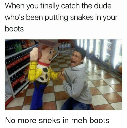 Dude, Meh, and Boots: When you finally catch the dude  who's been putting snakes in your  boots <p>No more sneks in meh boots</p>
