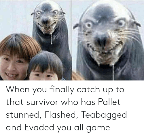 pallet: When you finally catch up to that survivor who has Pallet stunned, Flashed, Teabagged and Evaded you all game
