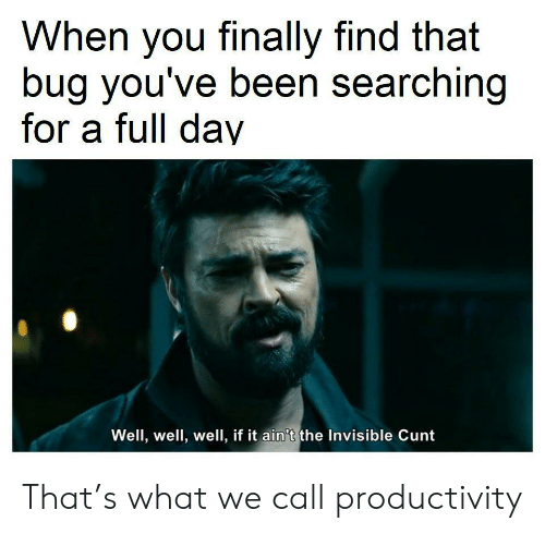 productivity: When you finally find that  bug you've been searching  for a full day  Well, well, well, if it ain't the Invisible Cunt That's what we call productivity