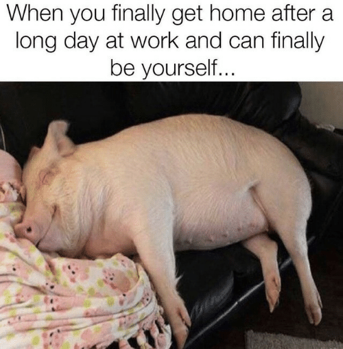 Long Day: When you finally get home after a  long day at work and can finally  be yourself...