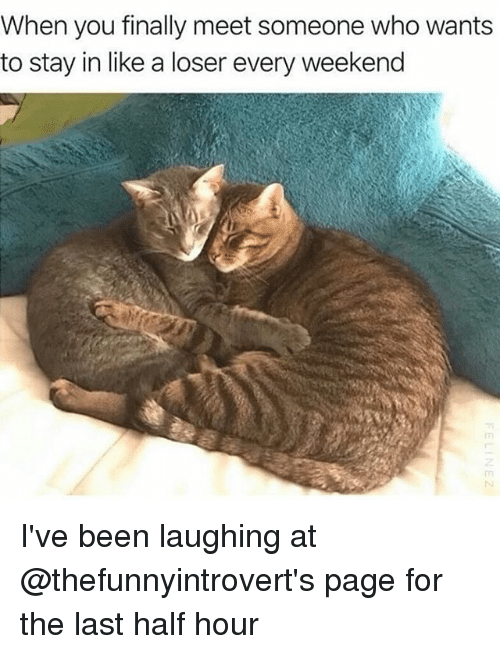 halfs: When you finally meet someone who wants  to stay in like a loser every weekend I've been laughing at @thefunnyintrovert's page for the last half hour