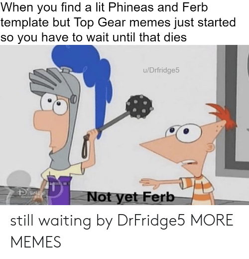 ferb: When you find a lit Phineas and Ferb  template but Top Gear memes just started  so you have to wait until that dies  u/Drfridge5  41  Not yet Ferb still waiting by DrFridge5 MORE MEMES