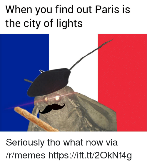 Memes, Paris, and Lights: When you find out Paris is  the city of lights Seriously tho what now via /r/memes https://ift.tt/2OkNf4g