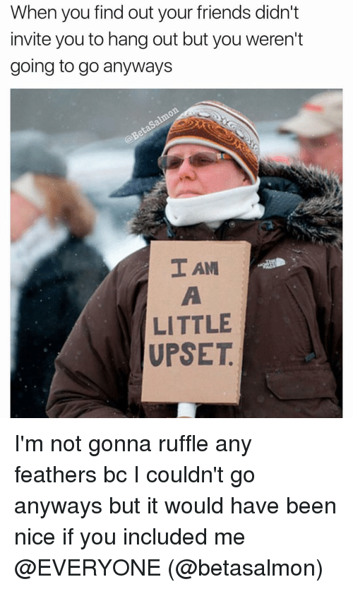 ruffles: When you find out your friends didn't  invite you to hang out but you weren't  going to go anyways  TAM  LITTLE  UPSET I'm not gonna ruffle any feathers bc I couldn't go anyways but it would have been nice if you included me @EVERYONE (@betasalmon)