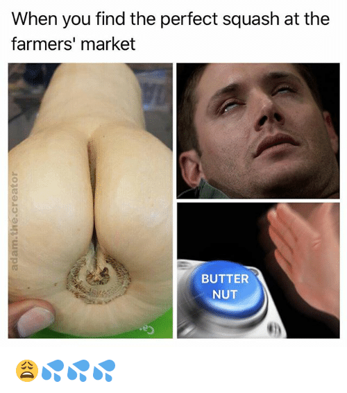 Memes, Marketable, and 🤖: When you find the perfect squash at the  farmers' market  0  BUTTER  NUT 😩💦💦💦