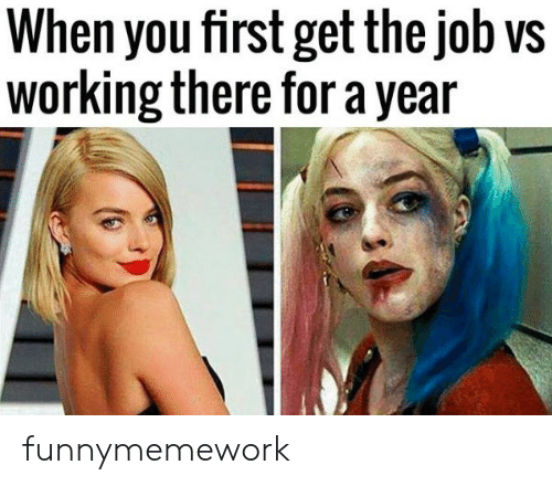 Job, Working, and First: When you first get the job vs  working there for a year funnymemework