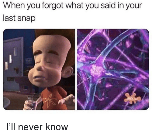 Dank Memes, Never, and Snap: When you forgot what you said in your  last snap I'll never know