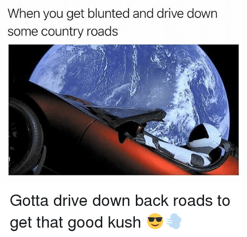 Blunted: When you get blunted and drive down  some country roads Gotta drive down back roads to get that good kush 😎💨