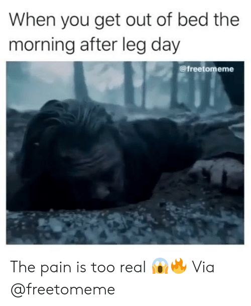 Leg Day: When you get out of bed the  morning after leg day  @freetomeme The pain is too real 😱🔥 Via @freetomeme