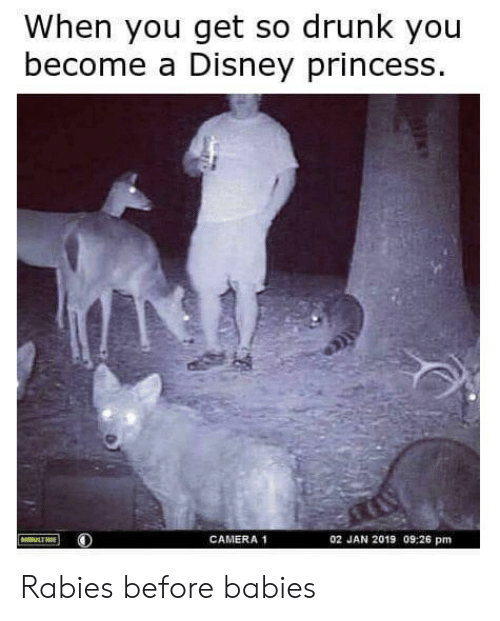 rabies: When you get so drunk you  become a Disney princess  CAMERA 1  02 JAN 2019 09:26 pm Rabies before babies
