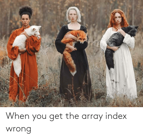 array: When you get the array index wrong