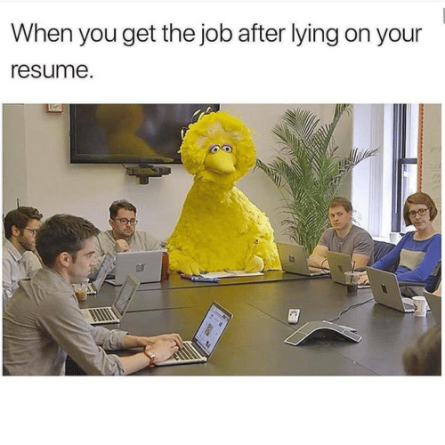 Resume, Lying, and Job: When you get the job after lying on your  resume.