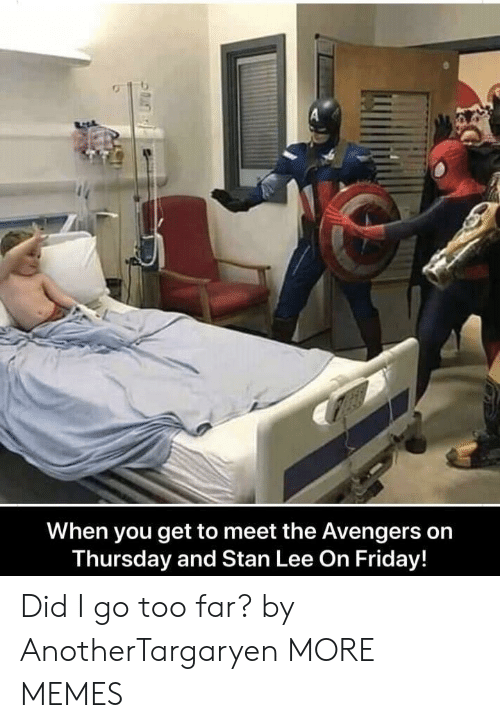 Dank, Friday, and Memes: When you get to meet the Avengers on  Thursday and Stan Lee On Friday! Did I go too far? by AnotherTargaryen MORE MEMES