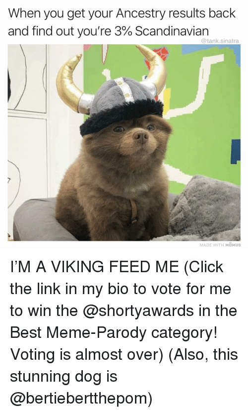 Click, Funny, and Meme: When you get your Ancestry results back  and find out you're 3% Scandinavian  @tank.sinatra  MADE WITH MOMUS I'M A VIKING FEED ME (Click the link in my bio to vote for me to win the @shortyawards in the Best Meme-Parody category! Voting is almost over) (Also, this stunning dog is @bertiebertthepom)